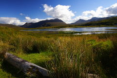The highlands stock images