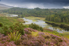 Highlands and Loch Royalty Free Stock Images
