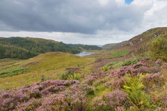 Highlands and Loch Stock Photo