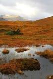 Highlands, Scotland Stock Photography