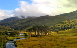 Highlands of Scotland. View from the Jacobite Steam Train from Mallaig to Fort William Royalty Free Stock Photos