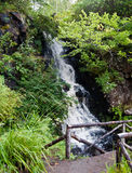 Highlands waterfall Royalty Free Stock Photography