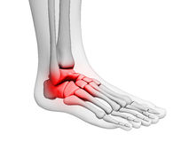 Highlighted ankle Royalty Free Stock Images