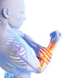 Highlighted arm Royalty Free Stock Photo