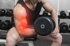 Highlighted arm of strong man lifting weights Stock Image
