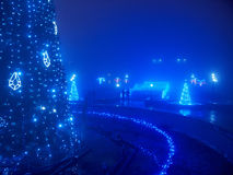 Highlighted artificial Christmas tree Royalty Free Stock Photography