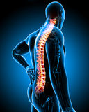Highlighted back pain in male Stock Photos