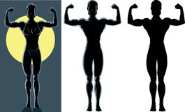 Highlighted bodybuilder Stock Photos