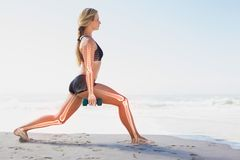 Highlighted bones of exercising woman Stock Images