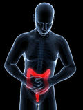 Highlighted colon. 3d rendered illustration of a man having bellyache Stock Photography