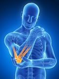 Highlighted elbow joint Royalty Free Stock Image