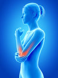 Highlighted elbow joint Royalty Free Stock Photo