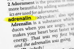 Highlighted English word `adrenalin` and its definition in the dictionary.  Royalty Free Stock Images