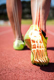 Highlighted foot bones of jogging man. Digital composite of highlighted foot bones of jogging man stock photography