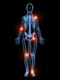 Highlighted joints Stock Photo