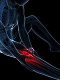 Highlighted knee. 3d rendered illustration of pain in the knee Royalty Free Stock Photos