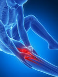 Highlighted knee joint. 3d rendered illustration of pain in the knee Royalty Free Stock Photo