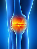 Highlighted knee joint Stock Image