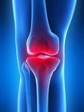 Highlighted knee joint Stock Photography