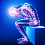 Highlighted male body skeleton vector illustration