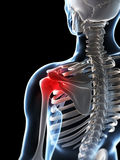 Highlighted male shoulder Royalty Free Stock Image