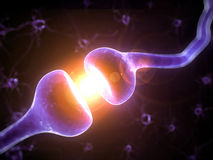 Highlighted receptor Stock Image
