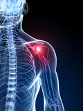 Highlighted shoulder. 3d rendered illustration of a painful shoulder Royalty Free Stock Photography