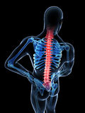 Highlighted spine Royalty Free Stock Images