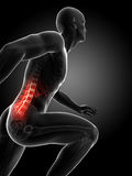 Highlighted spine. 3d rendered illustration - runners joints Stock Image