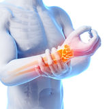 Highlighted wrist Stock Image