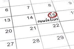 Highlighter rojo con la marca del d?a de la ovulaci?n en calendario stock de ilustración