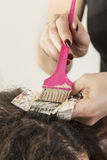Highlighting hair Stock Photo