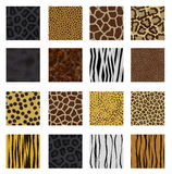 Highly detailed animal skin pack. 16 different patterns vector illustration