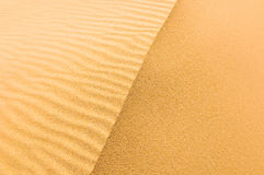 Highly detailed texture of sand dunes Royalty Free Stock Image