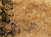 Highly detailed textured antique  decorative paper Stock Images