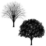 Highly detailed tree silhouette Royalty Free Stock Photo