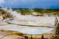 Highly Geothermal Landscape of Yellowstone National Park Royalty Free Stock Images