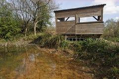 Highnam Woods RSPB Reserve Stock Image