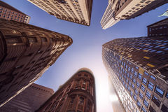 Highrise Buildings in the sun Royalty Free Stock Photos