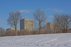 Highrise office buildings behind a snow covered park in Ottawa. Modern highrise office buildings behind a snow covered park with bare trees on a sunny winter day royalty free stock photography
