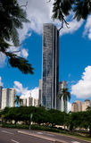 Highrise weerspiegelde gebouwen in Brisbane Royalty-vrije Stock Afbeeldingen