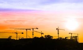 Highrisetornkran som lyfter lasten över solnedgång på färgrikt s Arkivfoton