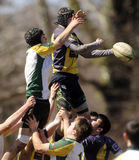 Highschool Club-Rugby Lizenzfreies Stockbild