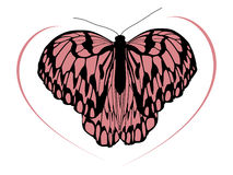Hight quality traced butterfly 1 Royalty Free Stock Image
