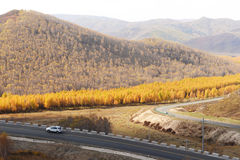 Hight way in the mountain in inner mongolia. Mountain and forest in inner mongolia in autumn royalty free stock photo