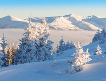Hight winter mountains Stock Photography