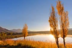 Highveld jesieni wschód słońca Zdjęcie Royalty Free