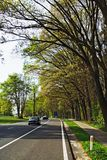 Highway. With bicycle path and trees with fresh spring leaves stock images