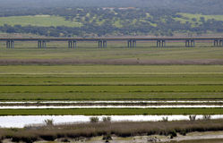Highway. Infrastructure over marshes by the Sado River bank, at Alcacer do Sal,southern Portugal,E.U Royalty Free Stock Photos