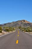 Highway in Arizona Desert. Rural highway through the Arizona desert with lots of cacti and mountains in the background royalty free stock photo